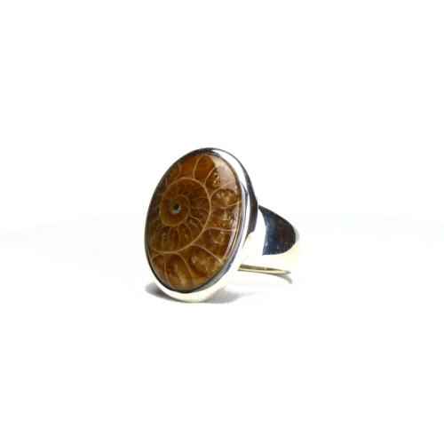 Bague ovale en ammonite